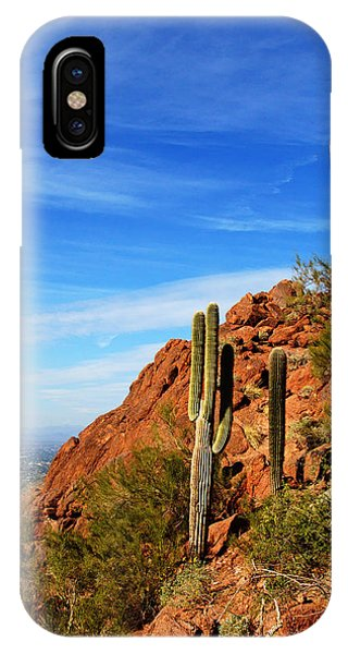 Cactus On Camelback 14x17 IPhone Case