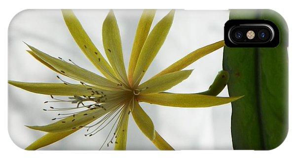 Cactus Orchid IPhone Case