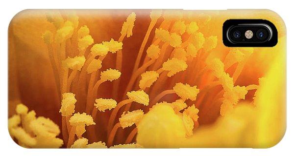 Cactus Pollen IPhone Case