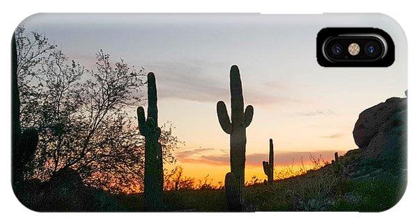 Cactus Sunset IPhone Case