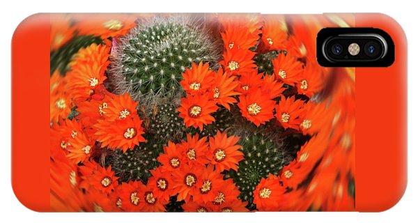Cactus Swirl IPhone Case