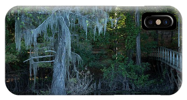 Caddo Lake #1 IPhone Case