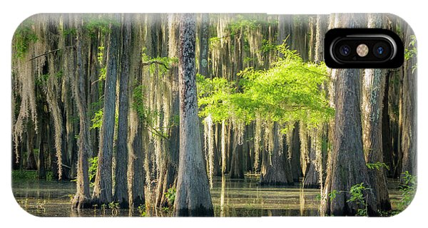 Caddo Swamp 1 IPhone Case