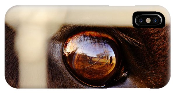 Eye Ball iPhone Case - Caged Buffalo Reflects by Robert Frederick