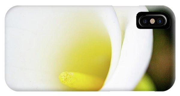 Simple iPhone Case - Cala Close by Terry Davis