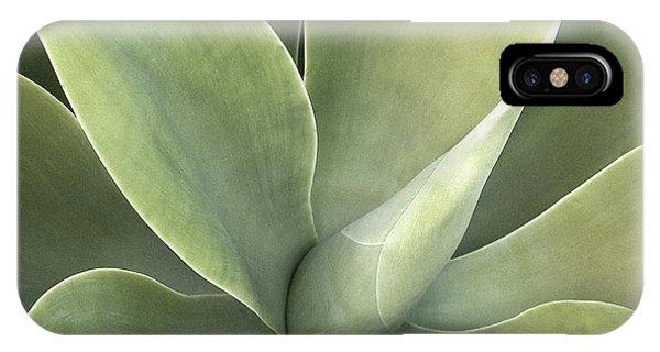 Cali Agave IPhone Case