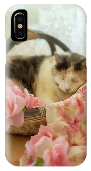 Calico Kitty In A Basket With Pink Roses IPhone Case