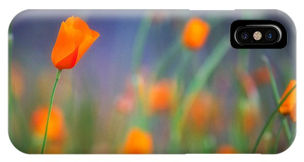 California Poppies 2 IPhone Case
