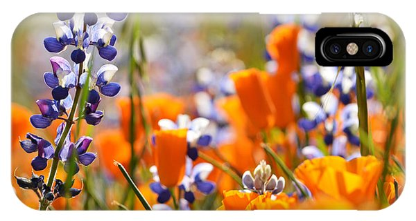 California Poppies And Lupine IPhone Case