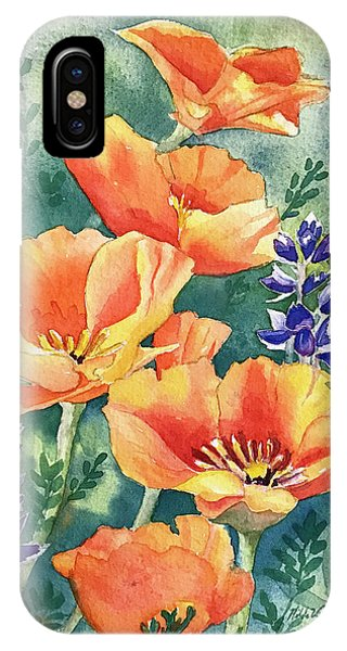 California Poppies In Bloom IPhone Case