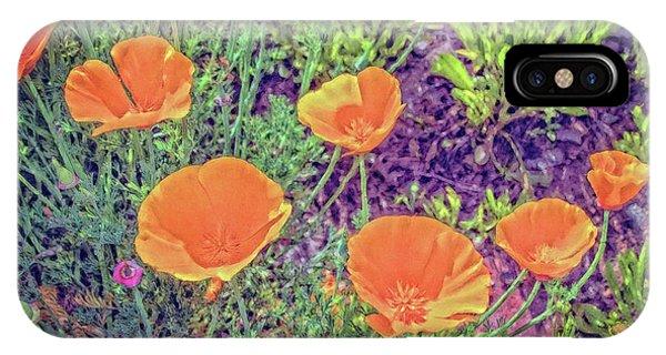 California Poppys Too IPhone Case
