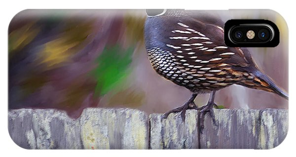 California Quail IPhone Case