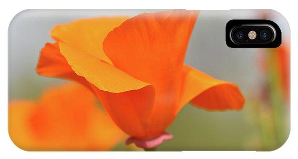 California State Poppy Macro IPhone Case