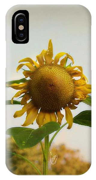 Californian Tuscany IPhone Case