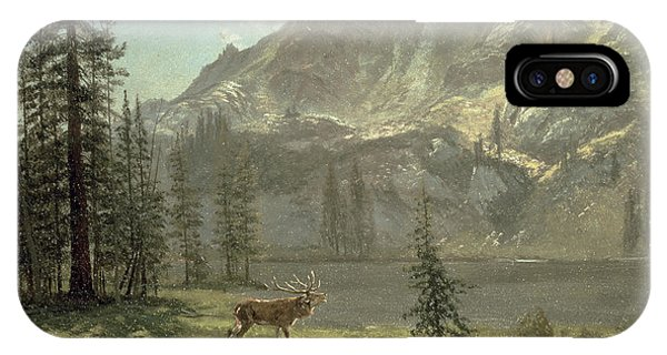 Stag iPhone Case - Call Of The Wild by Albert Bierstadt