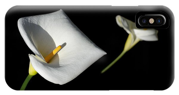 IPhone Case featuring the photograph Calla Lily by Jon Exley