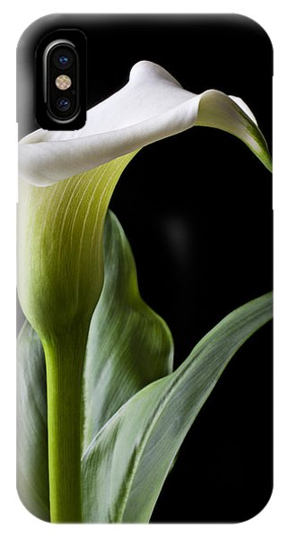 Floral iPhone Case - Calla Lily With Drip by Garry Gay