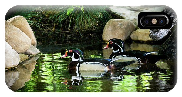 Calm Waters - Wood Ducks IPhone Case