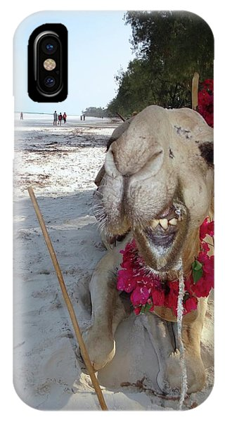 Exploramum iPhone Case - Camel On Beach Kenya Wedding2 by Exploramum Exploramum