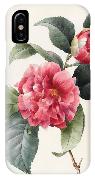 Flora iPhone Case - Camellia by Louise D'Orleans