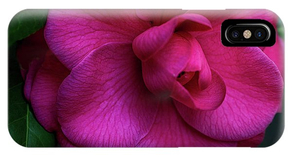 Camellia Passion IPhone Case