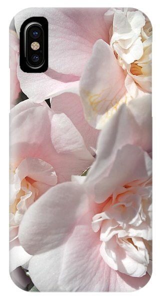 Camellias Softly IPhone Case