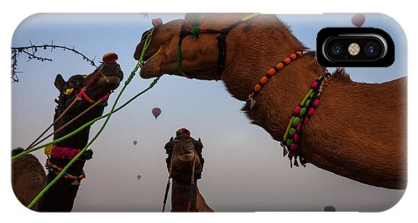 Camels And Balloons IPhone Case
