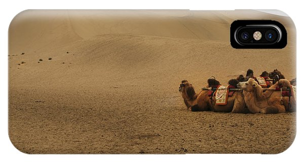 Camels Of The Silk Route IPhone Case