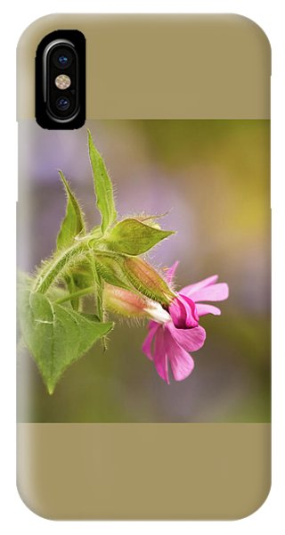 Campion And Blue IPhone Case