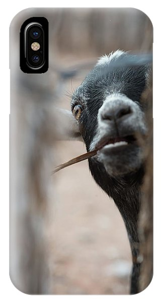 Can I Play? IPhone Case