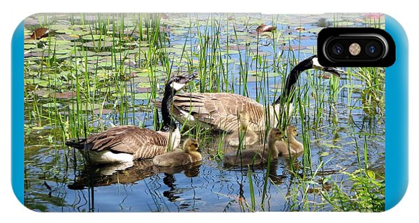 Canada Geese Family On Lily Pond IPhone Case