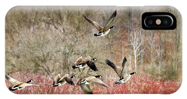 Canada Geese In Flight IPhone Case