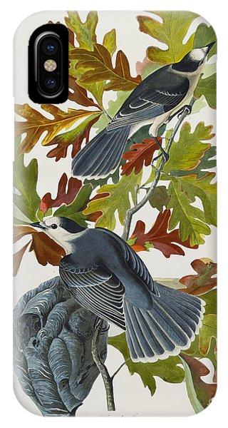 1851 iPhone X Case - Canada Jay by John James Audubon