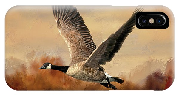 Canada Goose iPhone Case - Canada Air by Donna Kennedy