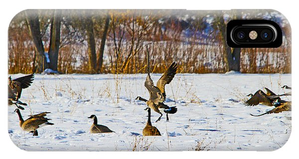 Canadian Geese At Sunrise IIi IPhone Case