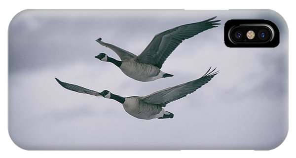 Canadian Geese In Flight IPhone Case