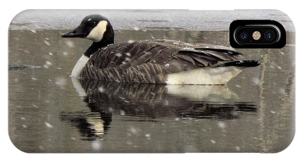 Canadian Goose In Michigan IPhone Case