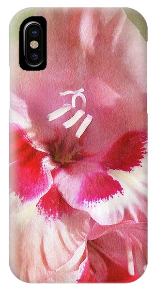 Candy Cane Gladiola IPhone Case