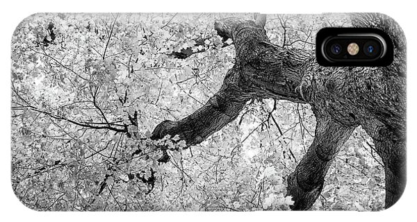 Branch iPhone Case - Canopy Of Autumn Leaves In Black And White by Tom Mc Nemar