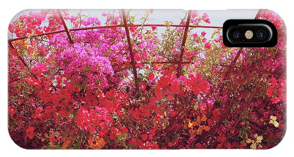Bougainvillea iPhone Case - Canopy Of Color- Photography By Linda Woods by Linda Woods