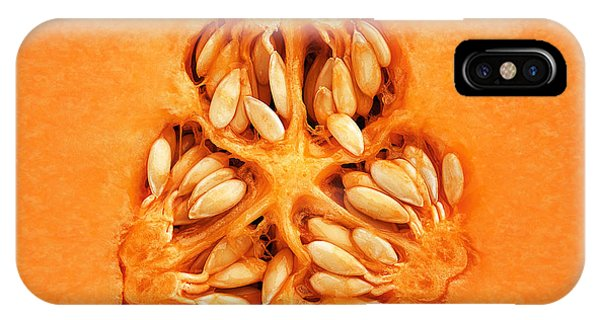 Cantaloupe Melon Inside IPhone Case