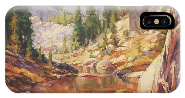 Back iPhone Case - Cantata by Steve Henderson