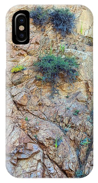 IPhone Case featuring the photograph Canyon Vegetation by James BO Insogna