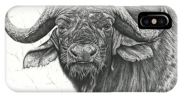 Cape Buffalo IPhone Case