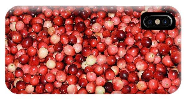 Cape Cod Cranberries IPhone Case