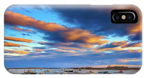Cape Porpoise IPhone Case
