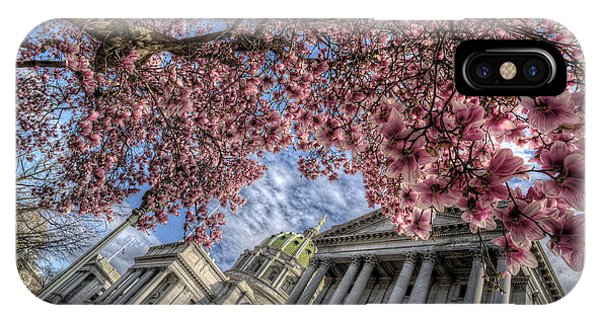 Capitol Blossoms IPhone Case