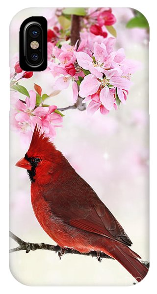 Cardinal Amid Spring Tree Blossoms IPhone Case