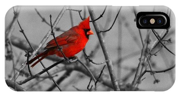 Cardinal Colorized IPhone Case
