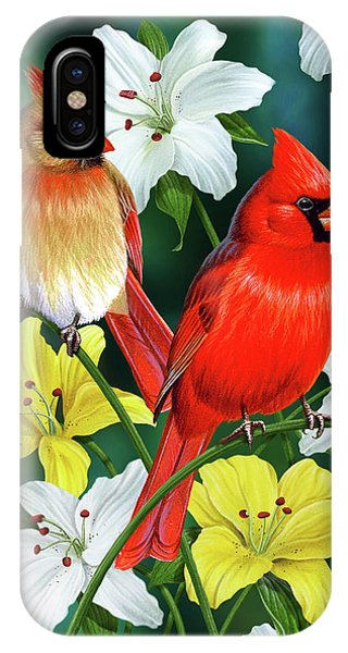 Cardinal iPhone Case - Cardinal Day 2 by JQ Licensing